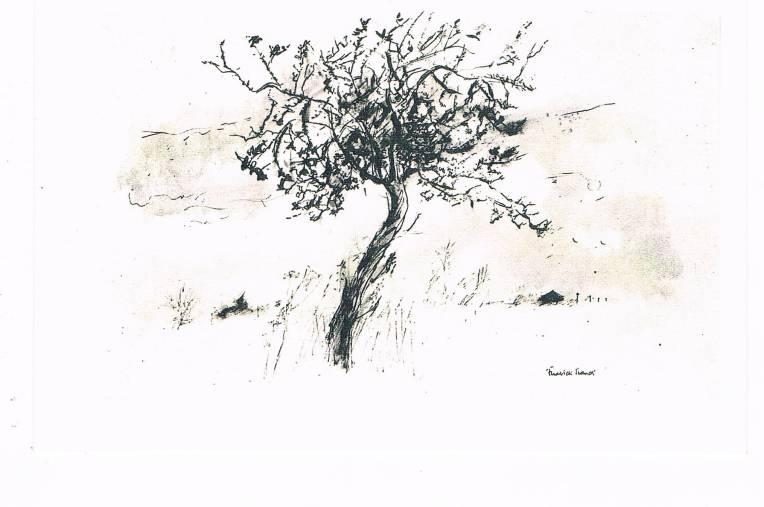 Frederick Franck - Lone Tree