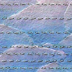 miriam louisa simons: daily details 05.08.12