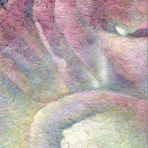miriam louisa simons: Pink Rose, detail